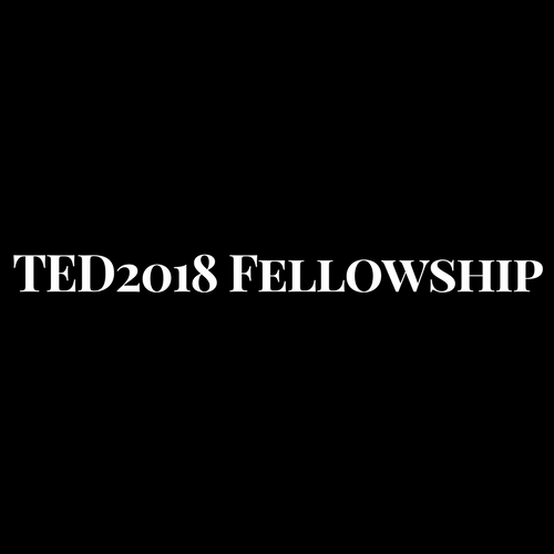 Are you an extraordinary African? Apply for the TED2018 Fellowship